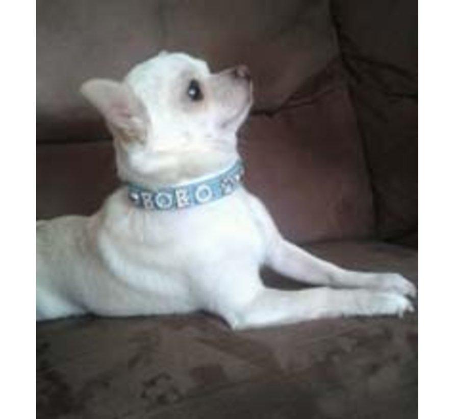 Dog collar with name Medium BabyBlue