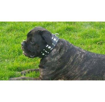 Doxtasy Hondenhalsband Glorious Black 60mm