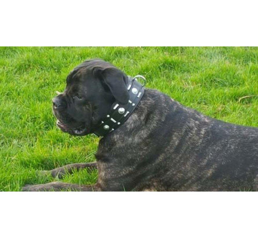 Hondenhalsband Glorious Black 60 mm