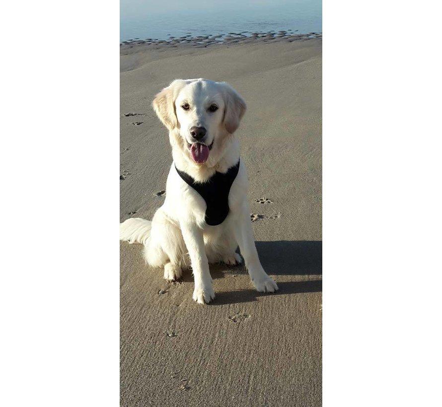 Round Loop Dog Harness Mesh Black