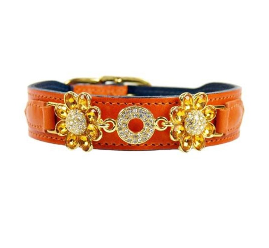 Dog Collar Daisy Tangeriney