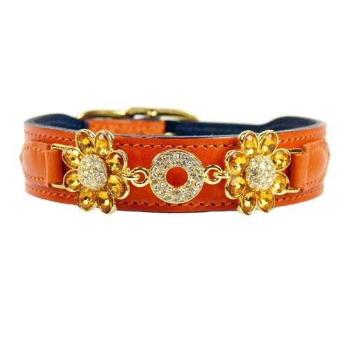 Hondenhalsband Daisy Oranje