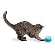 Petsafe Cat Toy Feeder