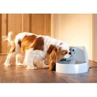 Petsafe Drinkfontein Drinkwell Original