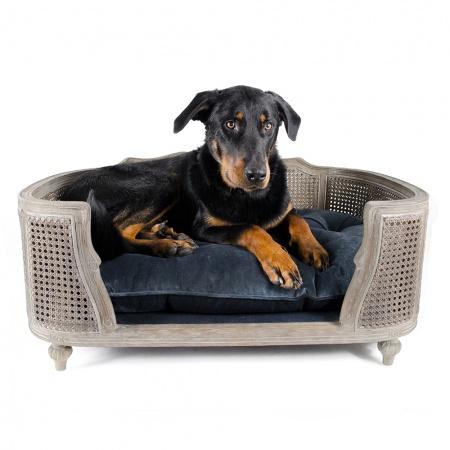 Hondenmand Arthur Royal Blue Velvet