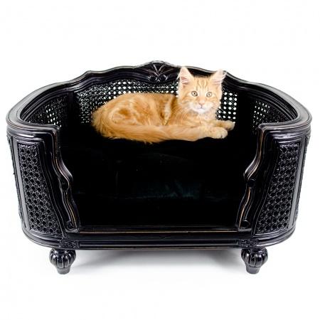 Kattenmand Arthur Black Velvet
