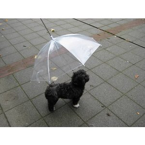 Petsonline Dog Umbrella