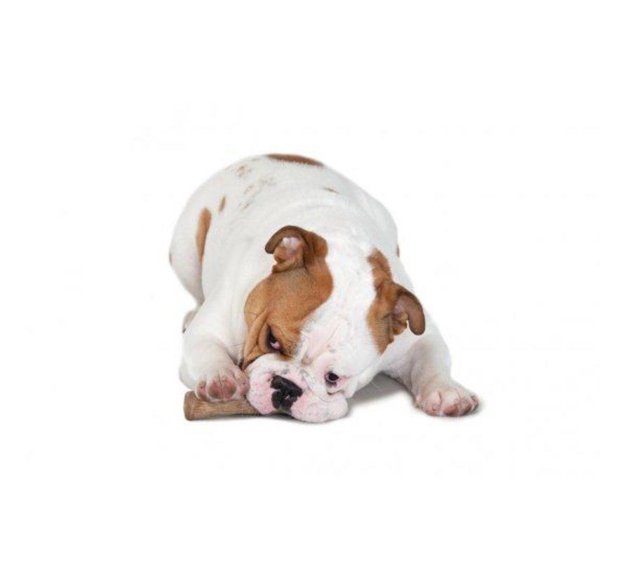Dog Toy Dogwood