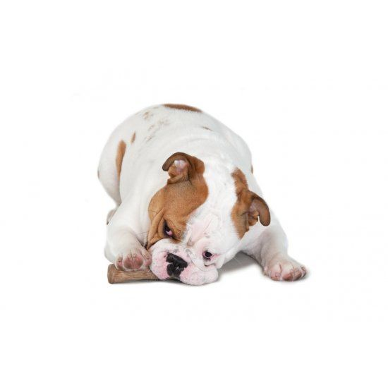 Hondenspeelgoed Dogwood