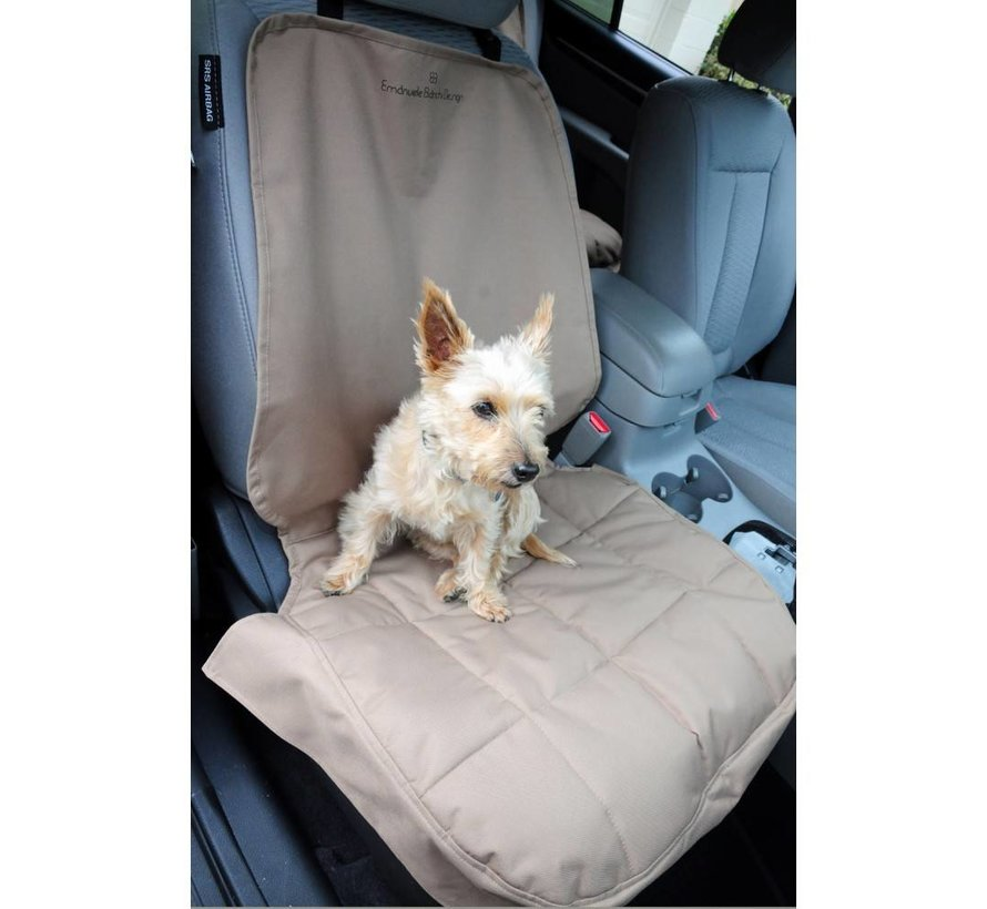 Dog Blanket for the front seat Gray