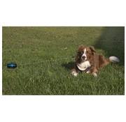 Petstages Retractable Cable Pet Tie Out