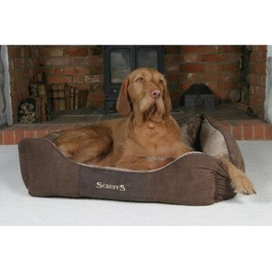 Scruffs Chester Dog Bed Chocolate