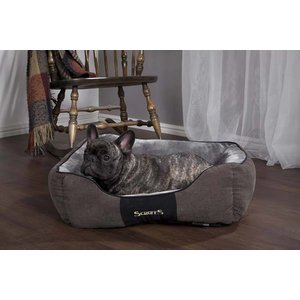 Scruffs Chester Dog Bed Graphite