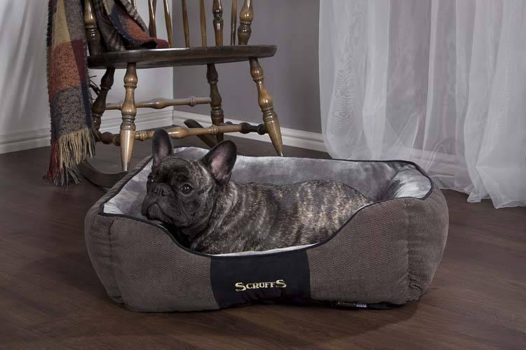 Scruffs&tramps chester box bed grafiet