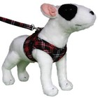 Doxtasy Comfy Dog Harness Scottish Black