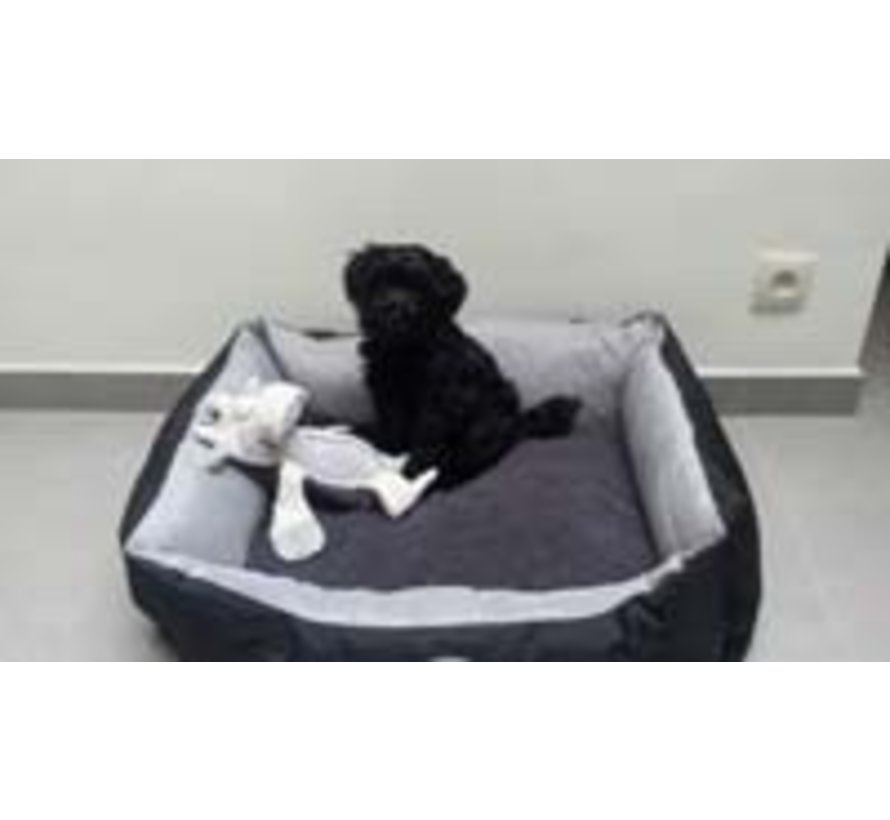 Dog Bed Expedition Graphite