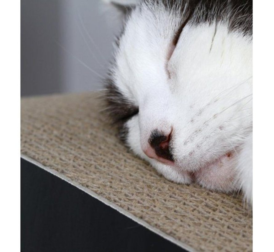Cat Scratcher LUI Brown