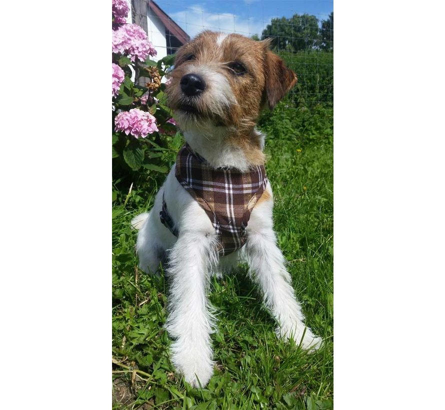 Round Loop Dog Harness Scottish Brown