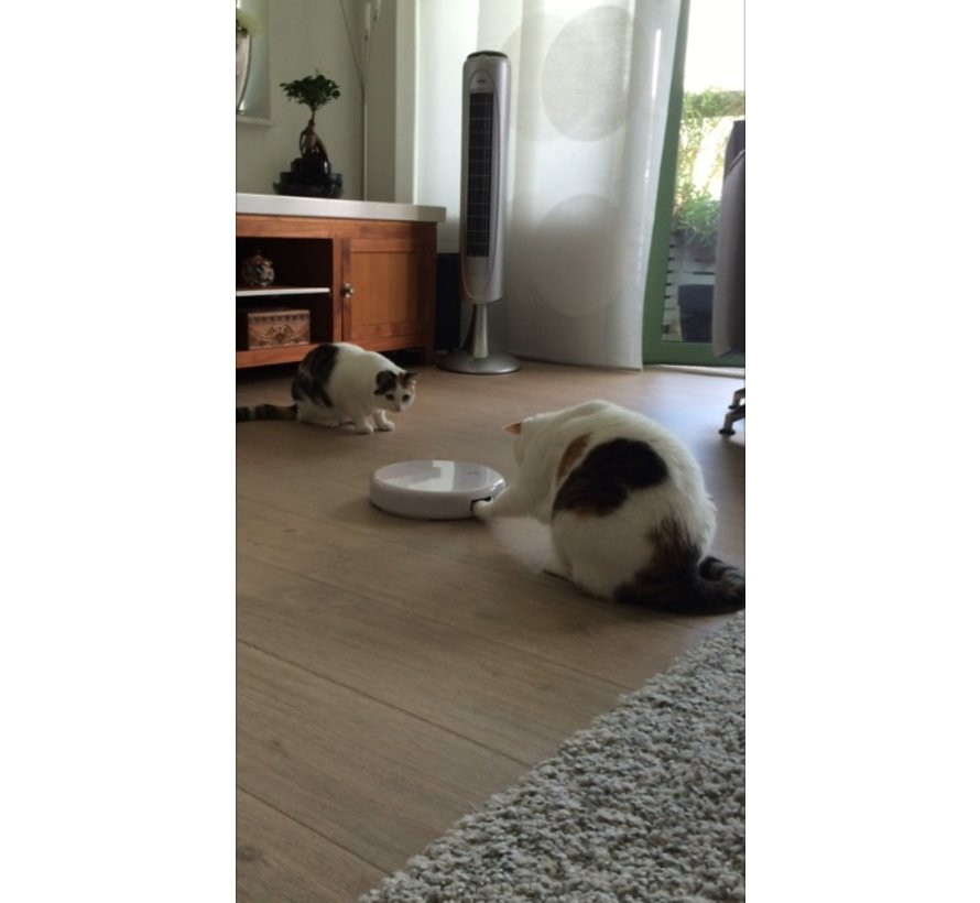Kattenspeelgoed Flik