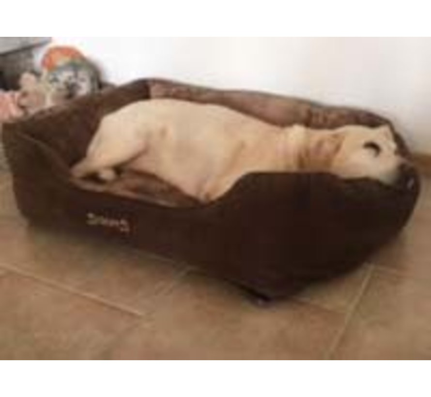 Chester Dog Bed Chocolate