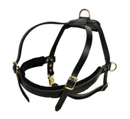 Dean and Tyler Dog Harness Cowboy