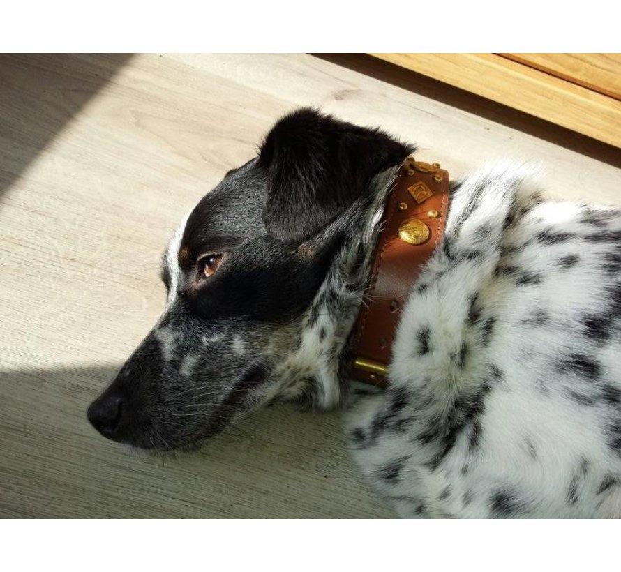 Dog Collar Royal Tough Brown