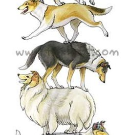 Foxloft Studios Collie Stack