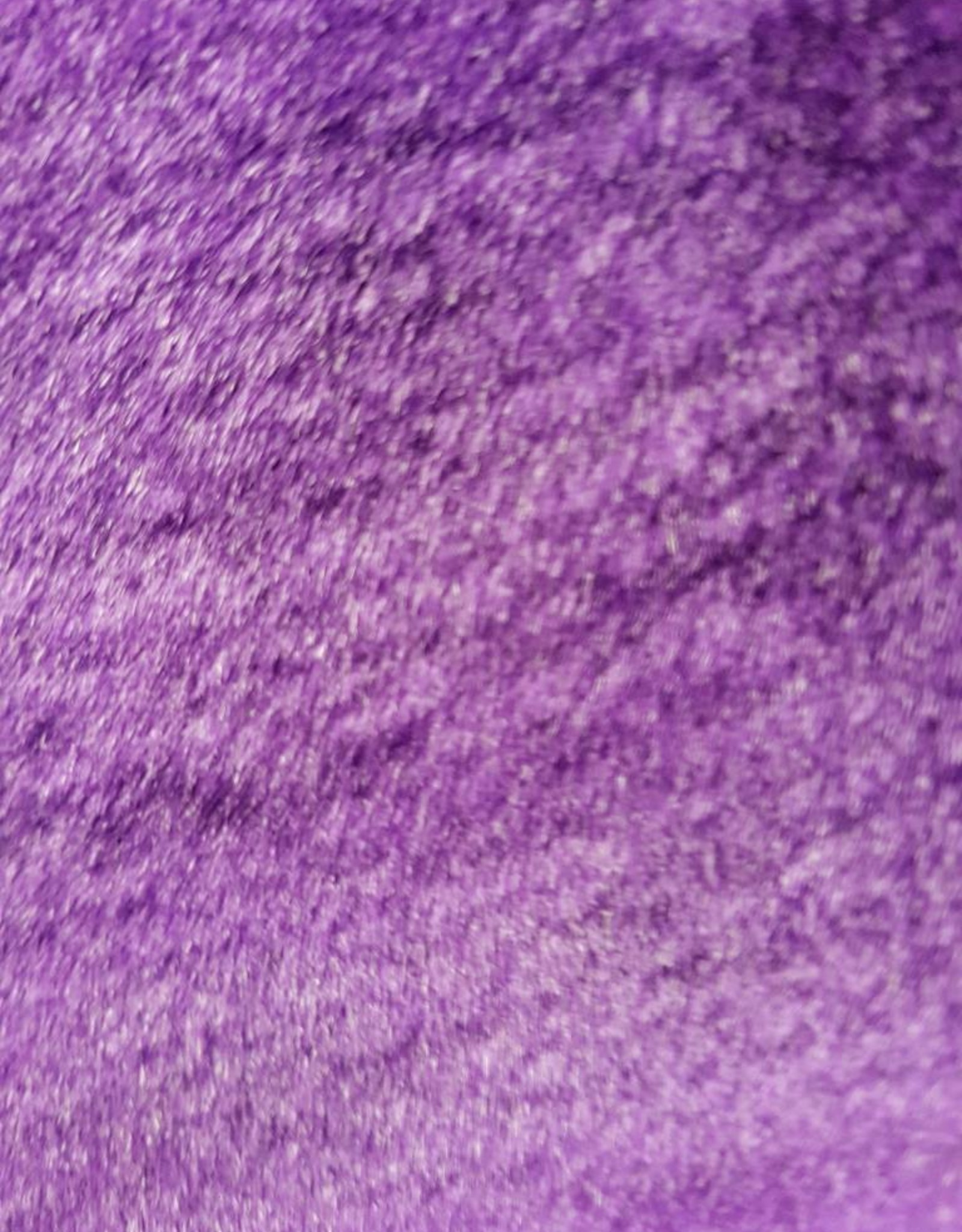 Kitty Fluff Siam - Indigo