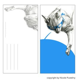 Nicole Pustelny Postcard - Super cat