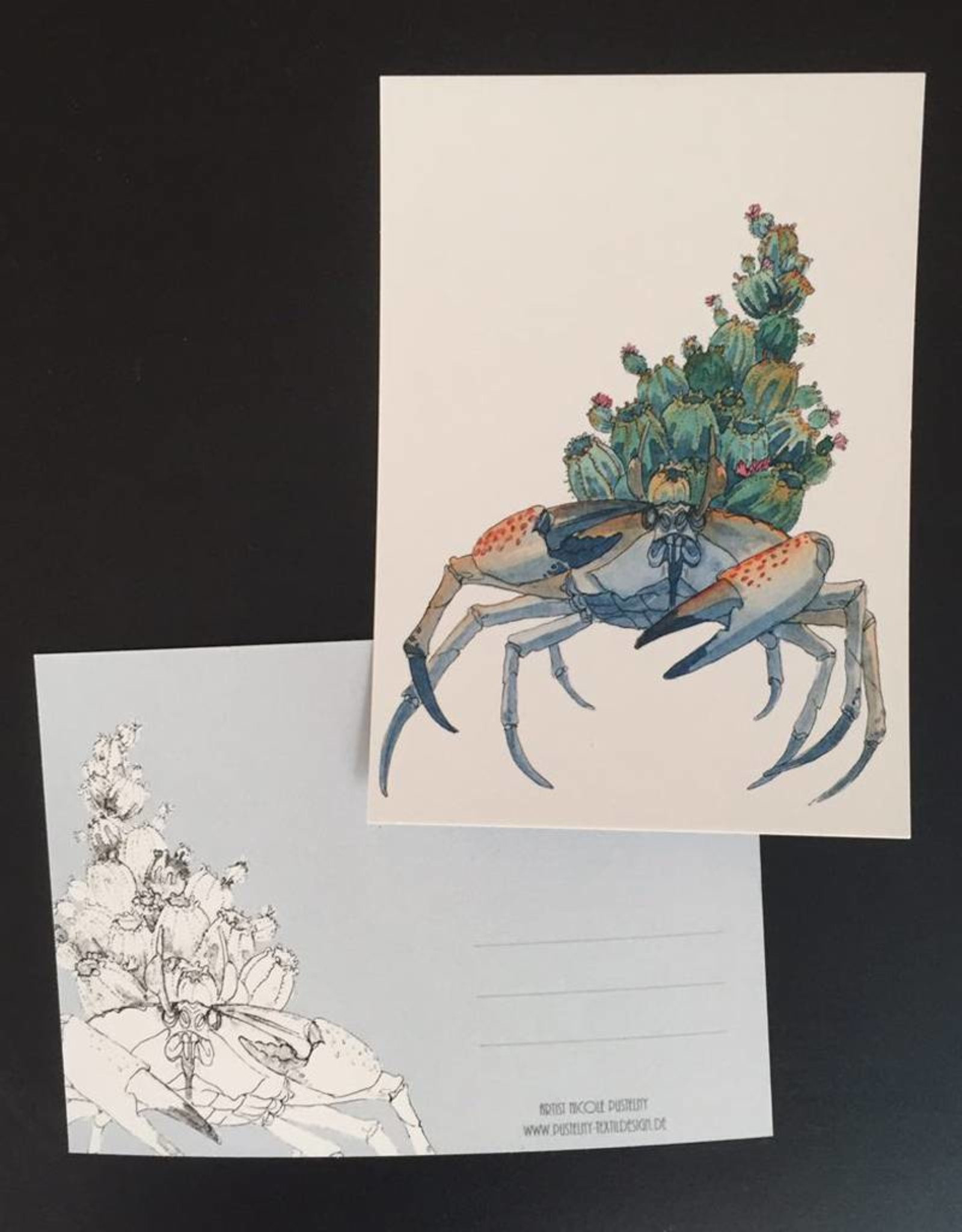 Nicole Pustelny Postkarte -Kaktuskrabbe