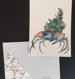 Nicole Pustelny Postkarte - Kaktuskrabbe