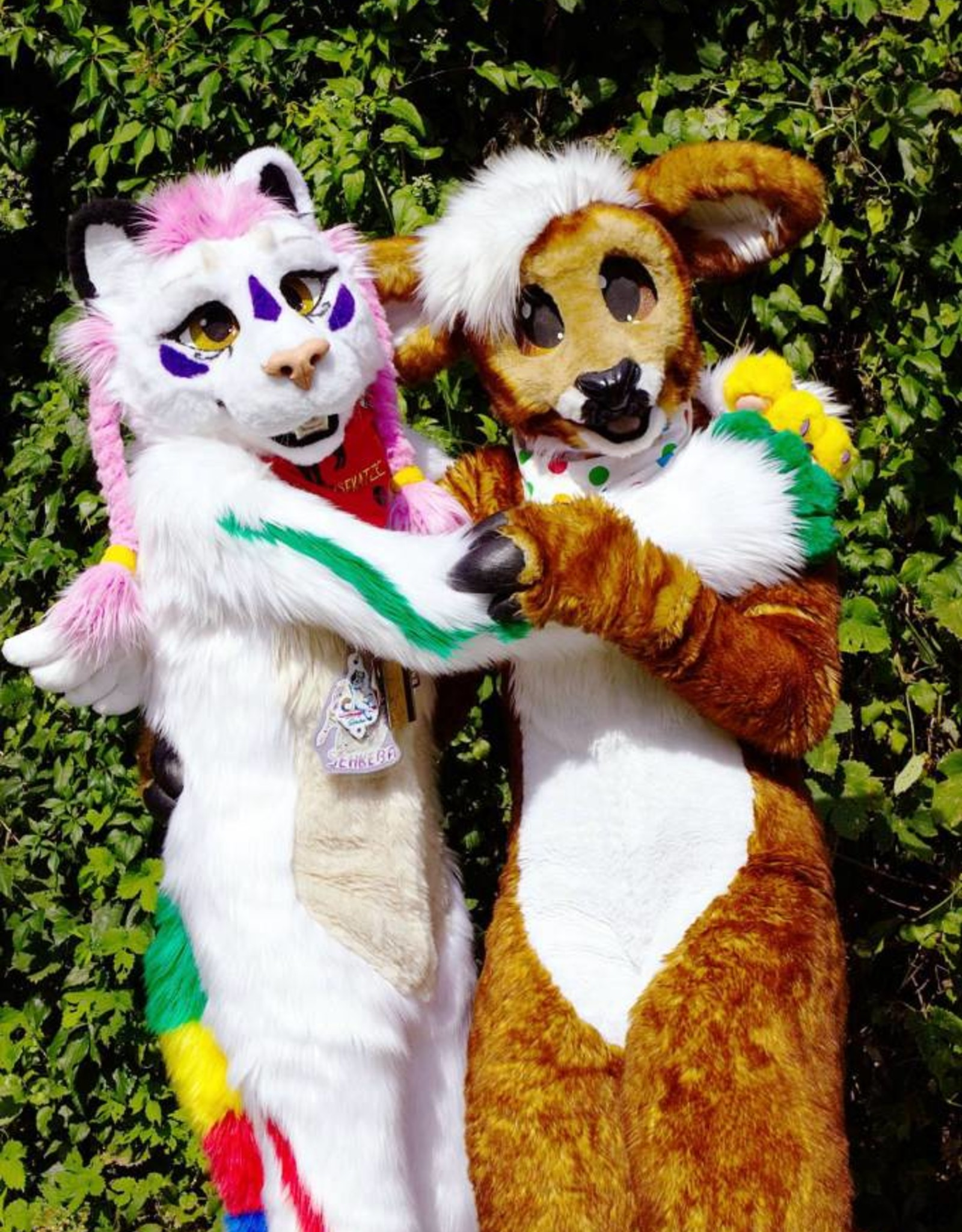 Kitty Fluff Fursuit Commission (Anfrage)