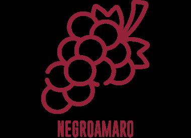 Negroamaro