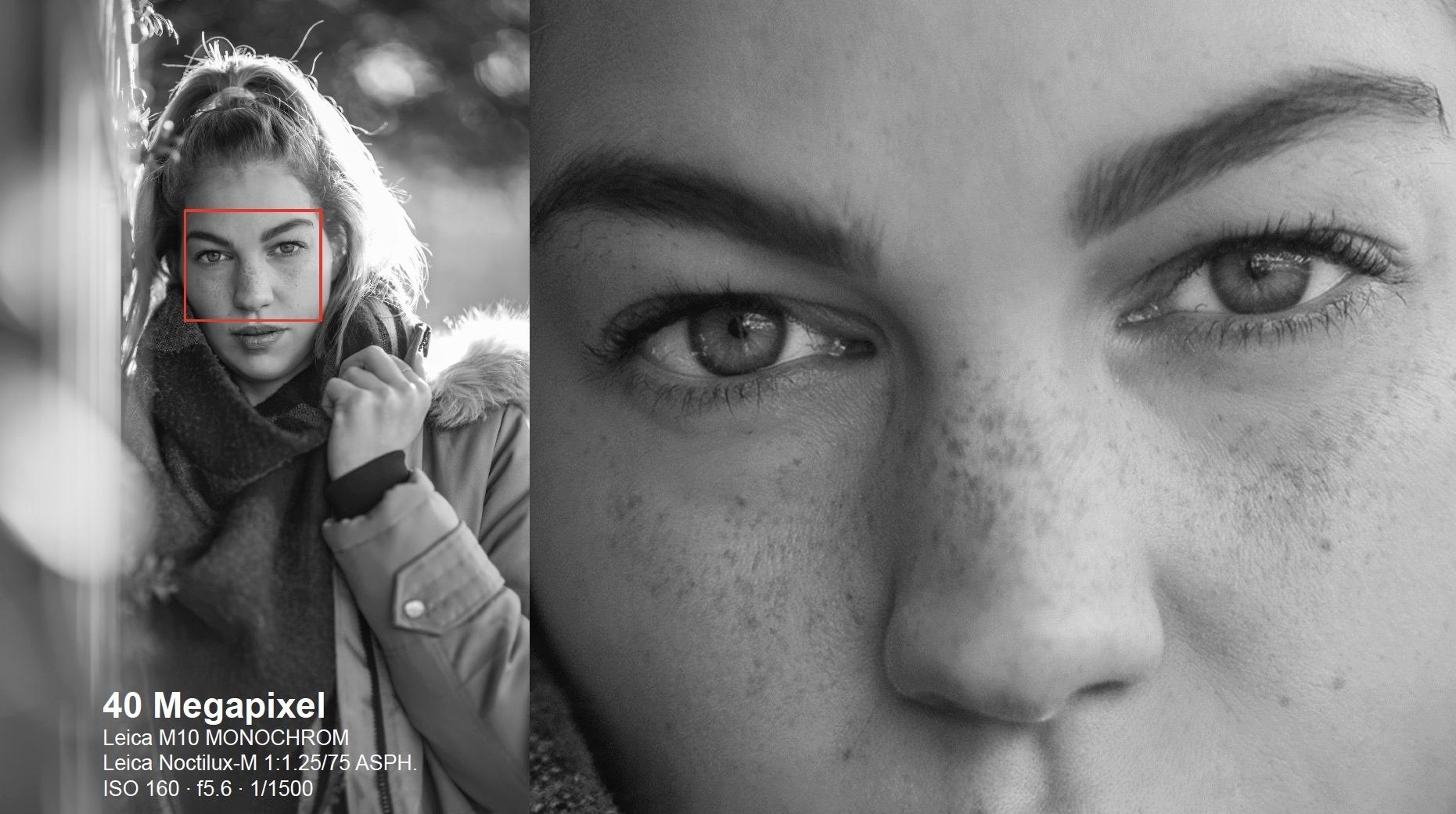 Leica M10 Monochrom 40mp resolution