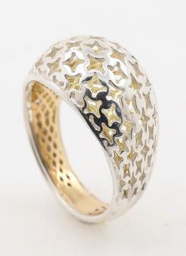 Ring Transparency Bicolor