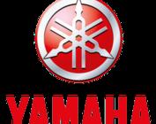 Yamaha Custom Parts