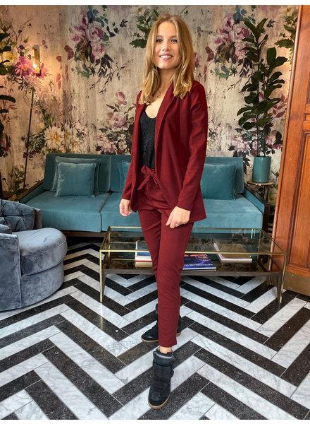 Stylish Suit - Bordeaux