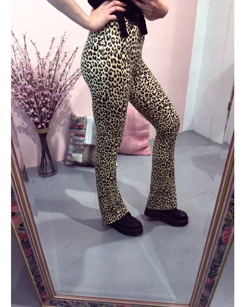 Leopard Flare Pants - Beige