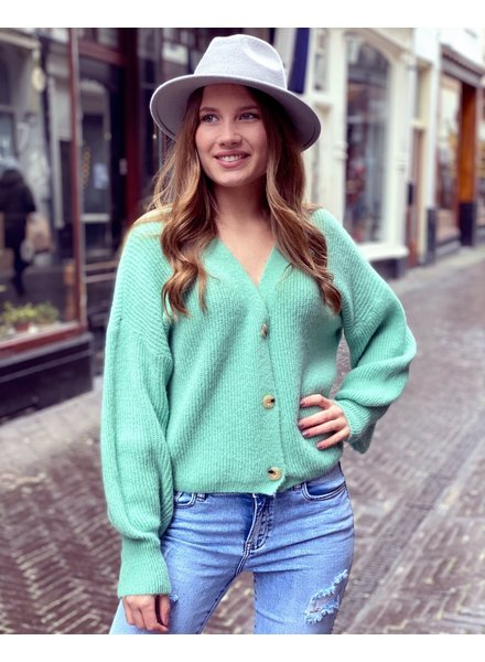 Claire Vest - Mint