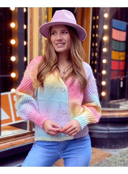 Paige Pastel Vest