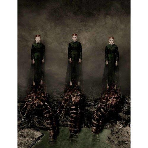 Stephen Rothwell Nosotros tres