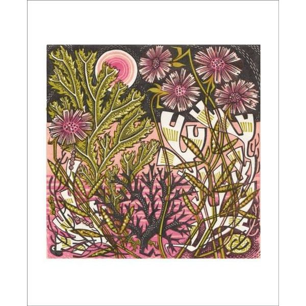 Sea Pinks card by Angie Lewin