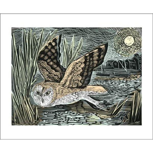 Marsh Owl by Angela Harding