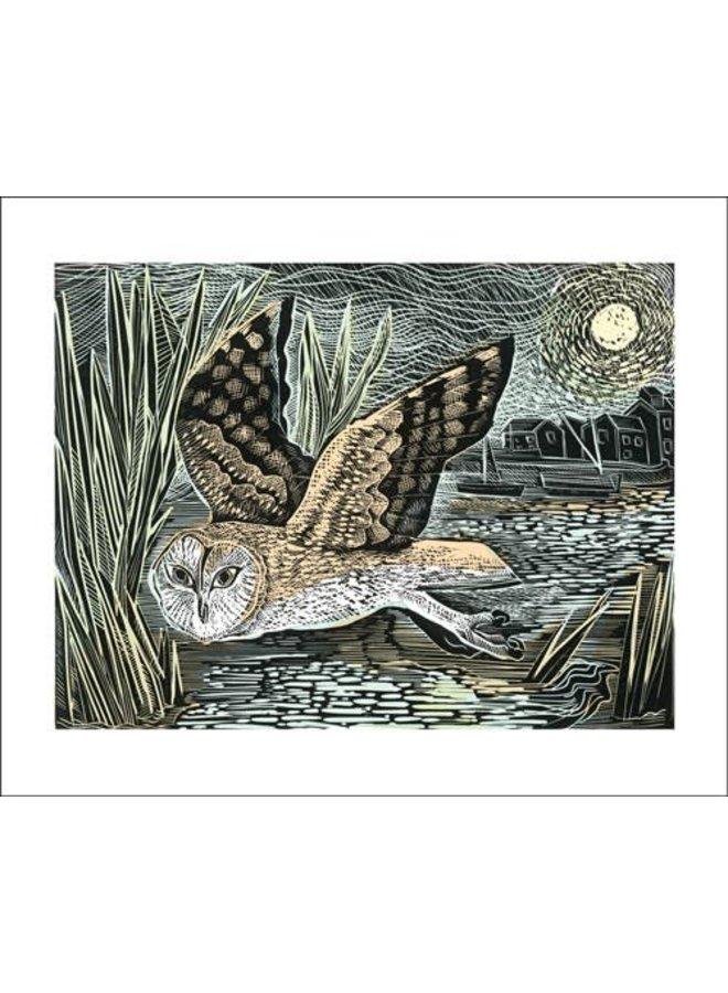 Marsh Owl von Angela Harding