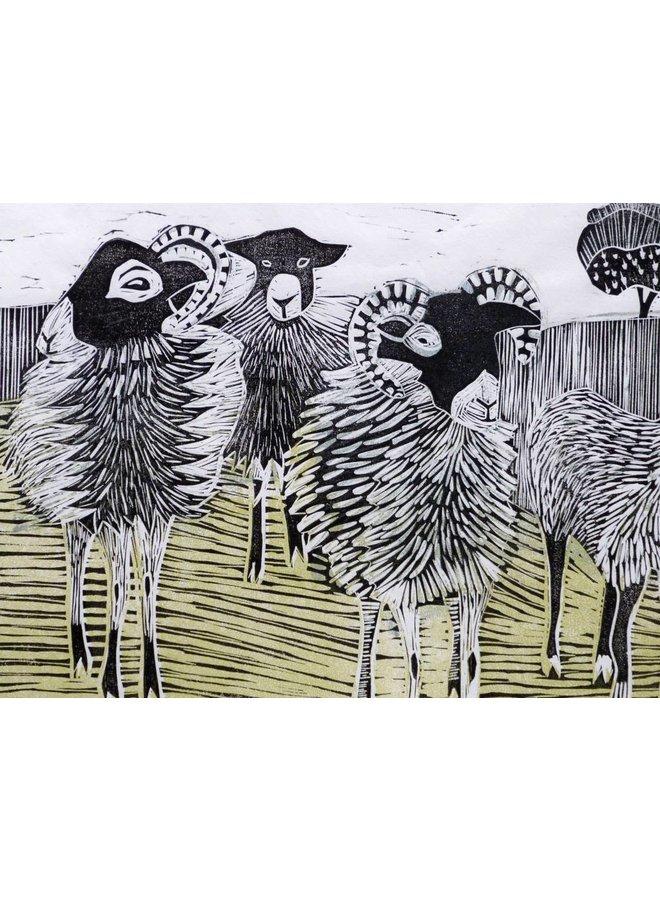 Sassy Sheep - Holzschnitt