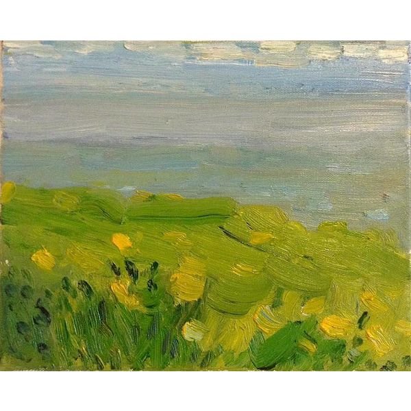 North Sea With Buttercups