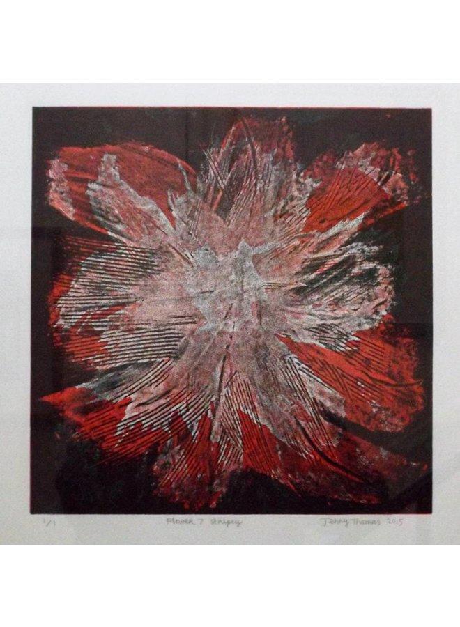 Blume 7 - Stripey
