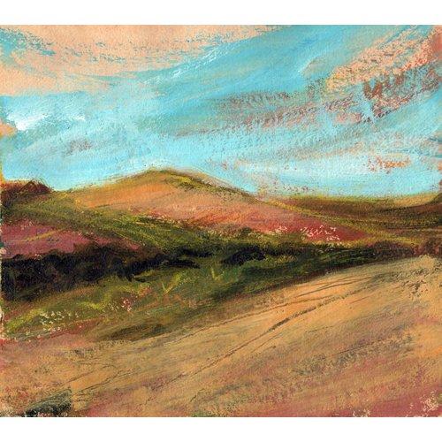 Liz Salter Copy of Evening Light