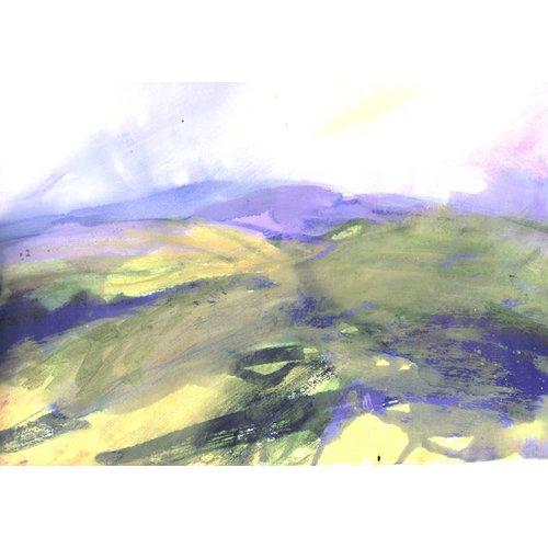 Liz Salter Hazy Moor
