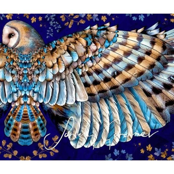 Abrigo de arte usable de Night Owl